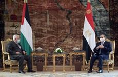 Ai Cập khẳng định ủng hộ sự nghiệp chính nghĩa của người Palestine