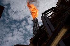 OPEC+ cắt giảm sản lượng, giá dầu châu Á hướng tới tuần tăng thứ năm
