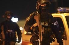 Đức, Áo phá âm mưu thành lập tổ chức cực hữu, thu giữ 100.000 viên đạn