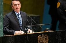 Brazil có nguy cơ mất quyền bỏ phiếu tại LHQ do nợ đóng góp ngân sách