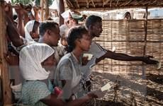 UNICEF: Hàng triệu trẻ em Ethiopia cần ưu tiên cứu trợ nhân đạo