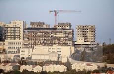 Palestine hối thúc quốc tế ngăn kế hoạch xây khu định cư của Israel