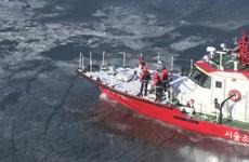 Hàn Quốc hứng chịu đợt lạnh -20 độ C, sông Hàn đóng băng dày 5cm