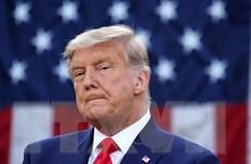"""Ông Trump thừa nhận """"một số trách nhiệm"""" trong vụ bạo loạn Quốc hội Mỹ"""