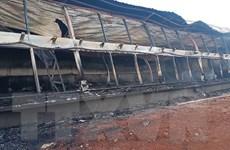 Hỏa hoạn thiêu rụi trang trại nuôi lợn, ước tính thiệt hại 90 tỷ đồng