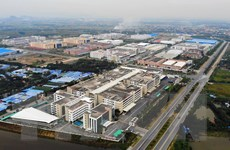 Nikkei Asia Review: Kinh tế Việt Nam vững vàng trong đại dịch COVID-19