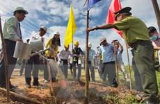 Thủ tướng gửi thư khen tỉnh Bến Tre hưởng ứng trồng 10 triệu cây xanh