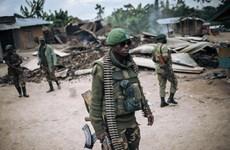 Thảm sát tại Cộng hòa Dân chủ Congo, ít nhất 12 người thiệt mạng