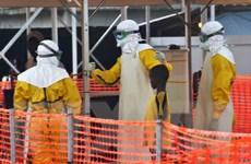 Tổ chức Y tế Thế giới cảnh báo 6 nước châu Phi về bùng phát dịch Ebola