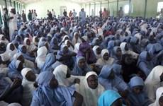 Hơn 300 nữ sinh bị bắt cóc tại một trường học ở Nigeria