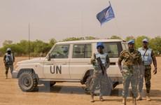 Việt Nam kêu gọi HĐBA thúc đẩy tiến trình chuyển tiếp ở Nam Sudan
