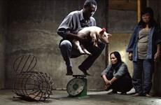 """Phim """"Vị"""" của đạo diễn Lê Bảo tỏa sáng tại Liên hoan phim Berlinale"""