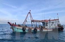Cà Mau: Cứu nạn thành công tàu cá bị chìm cùng 7 thuyền viên
