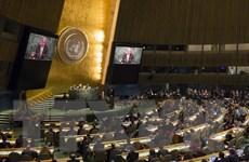 Ý tưởng về liên minh bảo vệ Hiến chương LHQ được nhiều quốc gia ủng hộ