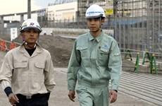Nhật Bản tuyên dương 4 lao động xây dựng Việt có thành tích xuất sắc