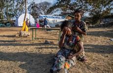 Ethiopia: Hàng trăm người thiệt mạng trong cuộc đụng độ ở biên giới