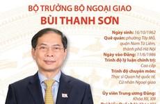 [Infographics] Tiểu sử Bộ trưởng Bộ Ngoại giao Bùi Thanh Sơn