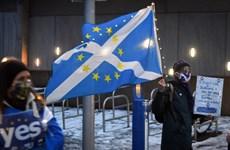 """Vấn đề tách khỏi Anh """"nóng"""" lên trước thềm bầu cử nghị viện Scotland"""