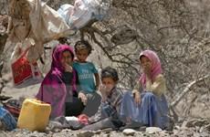 UNHCR: Biến đối khí hậu khiến số người di dời gấp đôi so với xung đột