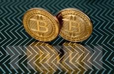 Bitcoin lần đầu dưới ngưỡng 50.000 USD, tiền điện tử đồng loạt lao dốc