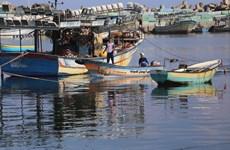 Israel mở lại khu vực đánh cá của người Palestine tại Dải Gaza