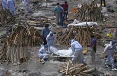 COVID-19 ngày 29/4: Số ca mắc toàn cầu vượt 150 triệu, tâm chấn Ấn Độ