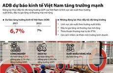 [Infographics] ADB dự báo kinh tế Việt Nam tăng trưởng mạnh mẽ