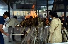Ấn Độ lần đầu ghi nhận hơn 4.000 ca tử vong một ngày do COVID-19