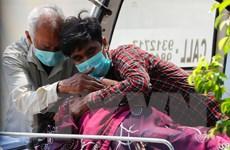 Dịch COVID-19: Ấn Độ giảm ca mắc mới, Mỹ số tử vong thực tế cao hơn