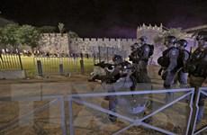 Bạo lực giữa người Palestine và cảnh sát Israel tái diễn tại Jerusalem