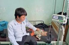 Nguyên nhân vụ ngộ độc cỗ cưới làm 120 người nhập viện ở Đắk Nông