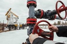 Trữ lượng dầu khí của Nga đủ cung cấp trong gần 60 năm
