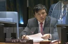 Việt Nam đề cao vai trò trung tâm của giải pháp chính trị cho Syria