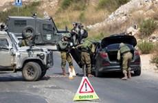 Quân đội Israel bắt giữ một thủ lĩnh của phong trào Hamas ở Bờ Tây