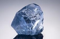 Chuẩn bị đấu giá viên kim cương xanh đặc biệt quý hiếm ở Nam Phi