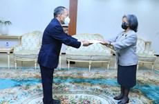 Việt Nam, Ethiopia tăng cường quan hệ song phương và ủng hộ lẫn nhau