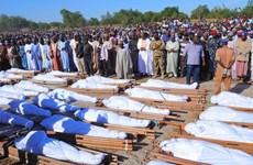 Gần 90 người thiệt mạng trong các vụ cướp bóc tại Tây Bắc Nigeria