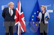 Anh kêu gọi EU giải quyết vấn đề thương mại Bắc Ireland hậu Brexit
