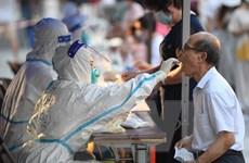 Tình hình dịch COVID-19 sáng 9/6: Các nước đẩy nhanh việc tiêm chủng