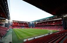 EURO 2020: Đan Mạch tăng số cổ động viên vào sân xem các trận đấu