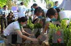 Kiên Giang triển khai hoạt động vì môi trường, phục hồi hệ sinh thái