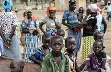 Xung đột tại Đông Bắc Nigeria có thể khiến hơn 1 triệu trẻ thiệt mạng