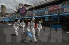 COVID-19: Số bệnh nhân tử vong tại Campuchia vượt ngưỡng 500 ca