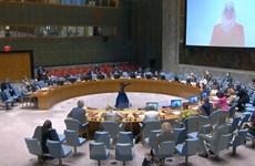 Hội đồng Bảo an Liên hợp quốc họp bàn về vấn đề hạt nhân Iran