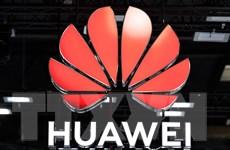 Huawei đạt thỏa thuận áp dụng công nghệ 4G cho ôtô của Volkswagen