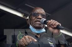 Cựu Tổng thống Nam Phi Jacob Zuma chấp hành án tù vì coi thường tòa án