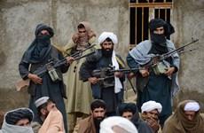 Phiến quân Taliban tuyên bố kiểm soát 85% lãnh thổ Afghanistan