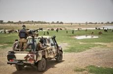 3 công dân Trung Quốc và 2 người Mauritania bị bắt cóc ở Tây Nam Mali