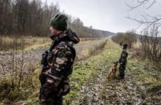 Frontex triển khai lính biên phòng giám sát biên giới Litva-Belarus