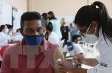 Số ca mắc COVID-19 tại Mỹ Latinh và Caribe vượt 40 triệu người